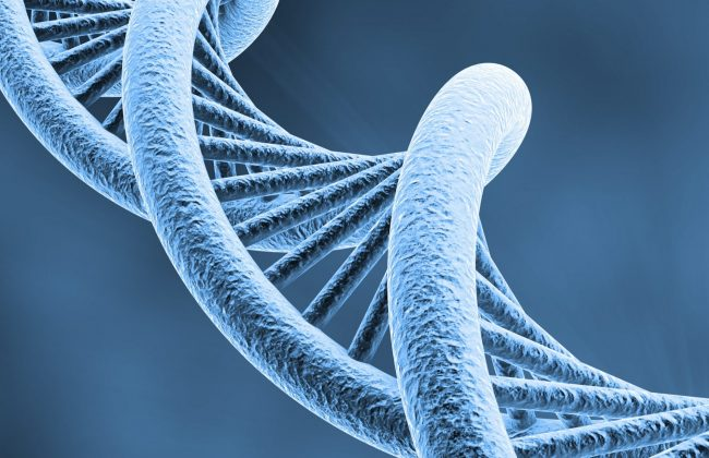 Low volume saliva DNA kits
