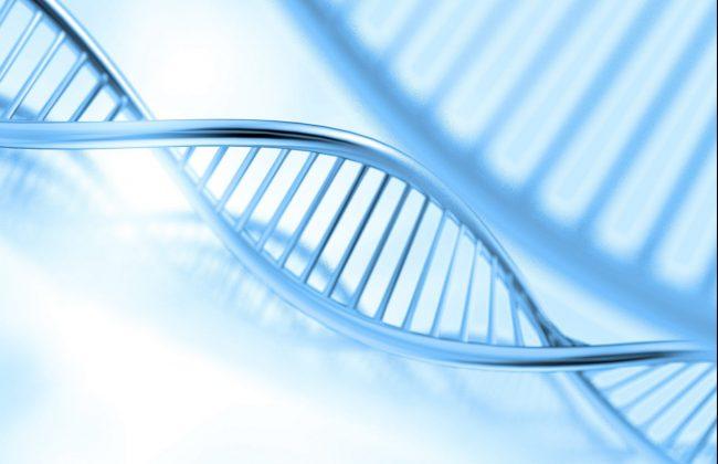 Large volume buffy coat DNA kits