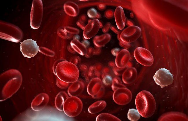 medium volume blood DNA kits