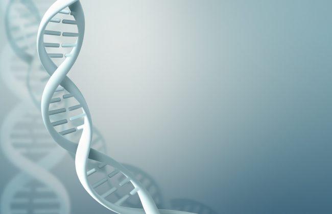 Medium volume saliva DNA kits