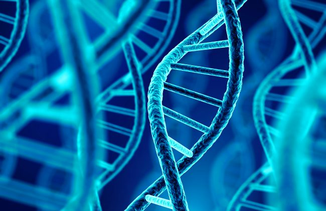 Low volume viral nucleic acids and genomic DNA Kits