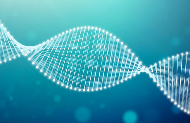 DNA for next generation sequencing