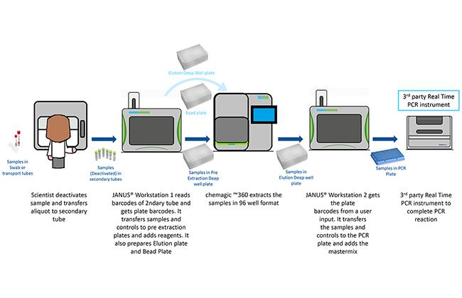 Coronavirus PCR testing workflow